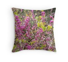 Adelaide in Spring - pink beauty Throw Pillow