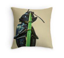 Hidden Beetle Throw Pillow