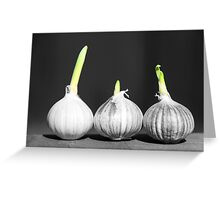 Shallot Sprouting Greeting Card