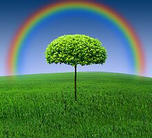 Evergreen Topiary tree with Rainbow over by Atanas Bozhikov