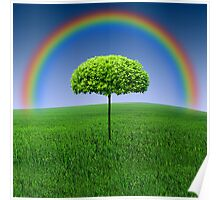 Evergreen Topiary tree with Rainbow over Poster