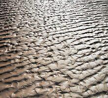 Mud flats by Julia Harwood