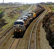 Ore Train, Western Australia by Julia Harwood