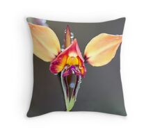 Purple donkey orchid Throw Pillow