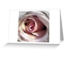 Rose... Greeting Card
