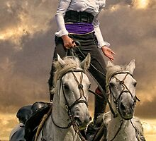 The Horsewoman by Tarrby