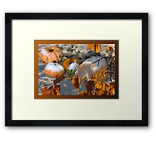 Pumkins in the snow Framed Print