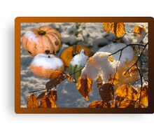 Pumkins in the snow Canvas Print