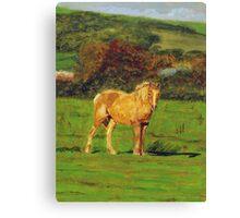 Horse#2 Canvas Print