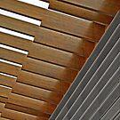 Building lines by DiamondCactus