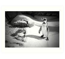 Lonely Penguin Art Print