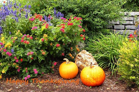 Abundant Garden by NatureGreeting Cards ©ccwri