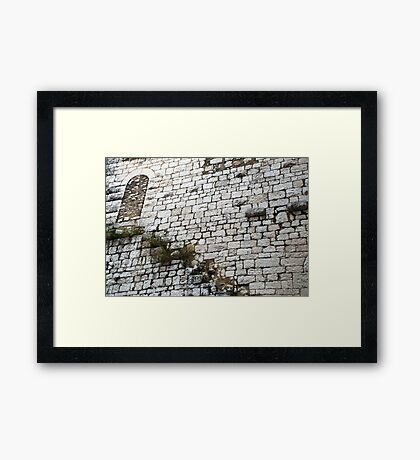 Trend Lightly  Framed Print