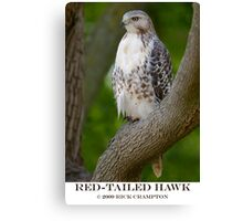 Red Tail Canvas Print