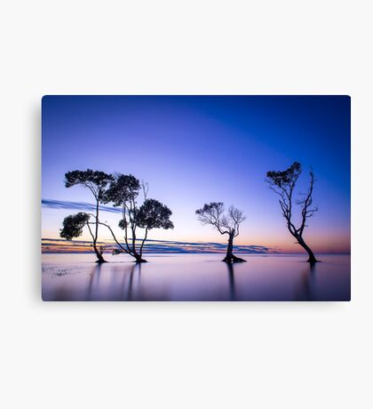 Beachmere Four Sisters Canvas Print