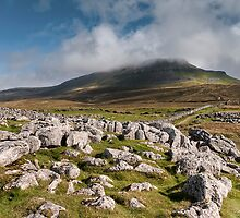 Pen-y-ghent by Neal Petts