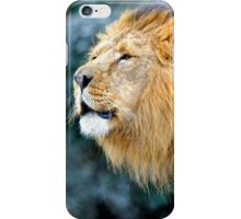 Male Asiatic Lion iPhone Case/Skin