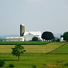 Amish Country - Intercourse, PA by hcorrigan
