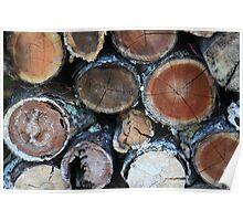 Firewood Patterns Poster