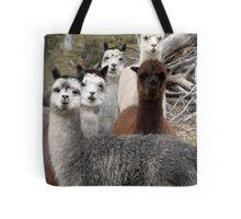 Alpaca Gang Tote Bag