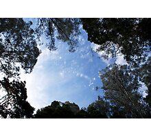 Australia Wonderland Photographic Print