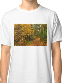 Impressions of Forests - A Walk up the Colorful Autumn Path Classic T-Shirt