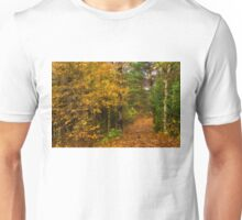 Impressions of Forests - A Walk up the Colorful Autumn Path Unisex T-Shirt