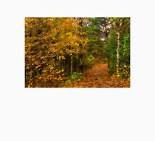 Impressions of Forests - A Walk up the Colorful Autumn Path T-Shirt