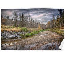 Pebbles on Mill Creek Ravine Poster