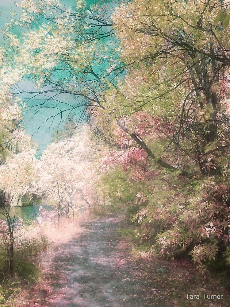 The Walkway of Forgotten Dreams by Tara  Turner