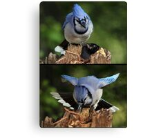 The Thief Got Angry When The Robber Stole His Peanut Canvas Print