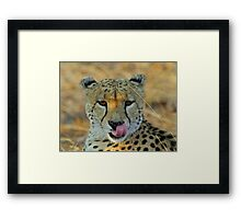 My food is nearby! Framed Print