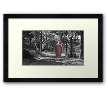 Telephone Booth Forest Framed Print