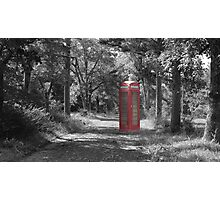 Telephone Booth Forest Photographic Print