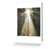 Light and Inspiration Greeting Card