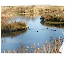 Mulwaree Ponds Poster