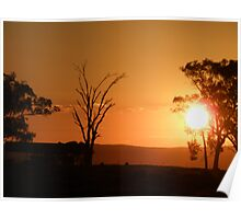 Sunset out of Cowra Poster