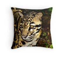 Santigo Cats, Clouded Leopard Throw Pillow