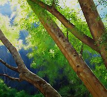 Apex Summer Light by Heidi Schwandt Garner
