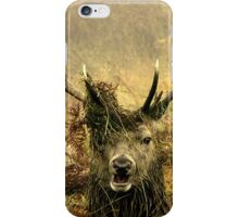 Stag Party, The Fun Begins iPhone Case/Skin