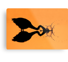 Silhouetted Great Blue Heron hunting. Metal Print