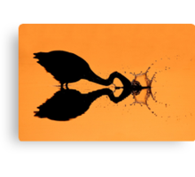 Silhouetted Great Blue Heron hunting. Canvas Print