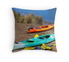 Anyone for a paddle ?? Throw Pillow