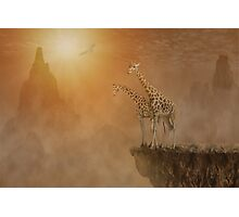 Two giraffes at  the high mountain Photographic Print