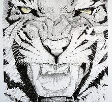 Tiger, Tiger by Sue Nichol