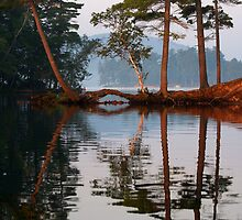 Adirondack Reflections by Raider6569