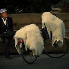 Mongolia ....... by BrainCandy