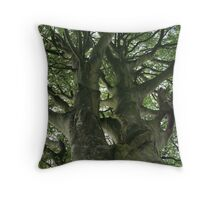 A Tree Reaching for the Sky Throw Pillow