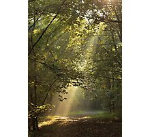 Guiding Light Photographic Print