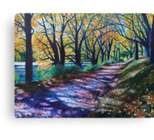 'Autumn Canopy' Canvas Print